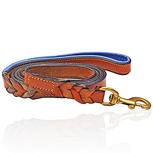 PetsUp Padded Leather Dog Collars and Leashes (Royal Leash- Tan\Blue, Large)
