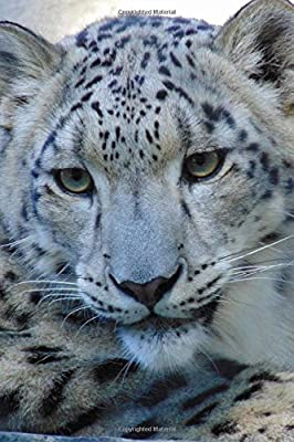 Such A Sweet Face Snow Leopard Big Cat Journal 150 Page Lined