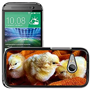 Hot Style Cell Phone PC Hard Case Cover // M00110482 Chicks Animal Fluffy Poultry // HTC One Mini 2 / M8 MINI / (Not Fits M8)