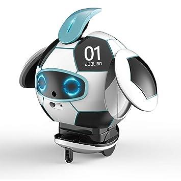 Amazon.com: Alry Smart Robot Juguetes, reconocimiento de voz ...