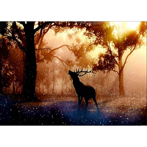 DIY 5D Diamond Painting Kit, Hoshell Full Drill Christmas Deer Elk Embroidery Cross Stitch Arts Craft Canvas Wall Decor Diamond Painting for Adults by Number Kit (B)