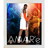 Biggsports Amare Stoudemire knicks Team Colors Composite Framed 11x14 Collage