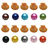 NewEGG Cultured 10PCS Oysters with Pearls Inside Love Wish Ten Colors New Arrival Red Shell Oysters