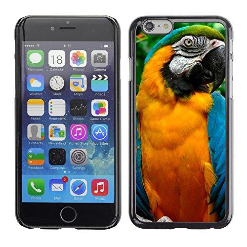 """Premio Sottile Slim Cassa Custodia Case Cover Shell // V00003699 perroquets // Apple iPhone 6 6S 6G PLUS 5.5"""""""