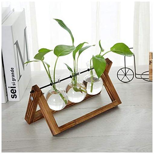 Vaso a bulbo in vetro con retro stand in legno massello e portautensile in metallo rotante per piante in coltura idroponica Fioriera in vetro da tavolo per casa/giardino/matrimonio,11″x 5.5″