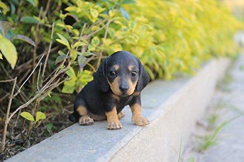 Hi-Line Gift Ltd. Pet Pals-Dachshund Puppy