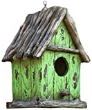 Harmony Fountains The Little Green House 9'' Cottage Birdhouse -Stylish Functional Bird House. HF-G11 by