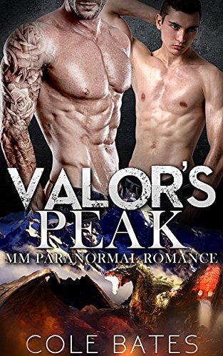 Gay Valors Shifter Romance Fiction ebook product image
