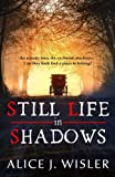 img - for Still Life in Shadows book / textbook / text book