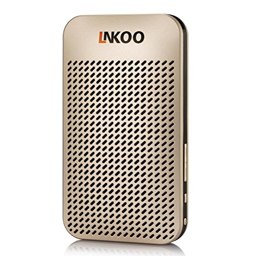 Portable Bluetooth Speakers,AMERTEER Wireless Speakers Stereo Sound With 5000mAh Power Bank Function,Built-in Microphone Hands Free Support AUX In TF Card 24 Hour Playing Time ( Gold)
