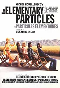 The Elementary Particles