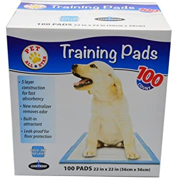 All-Absorb Training Pads 100-count