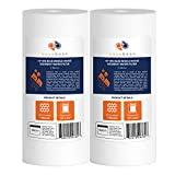 2-PACK Of 1 Micron 10''x4.5'' Sediment Water Filter Whole House Big Blue by Aquaboon