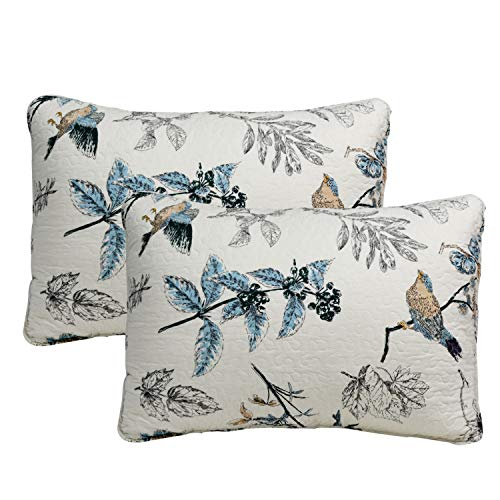Brandream 100% Cotton Quilted Pillow Shams 2-Piece Standard Size American Country Pillow Shams Bedroom Decor