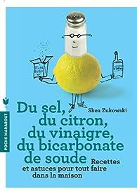 Du sel, du citron, du vinaigre, du bicarbonate de soude par Shea Zukowski