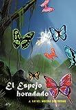 El Espejo Horadado, J. Rafael Molina Contreras, 1463328842