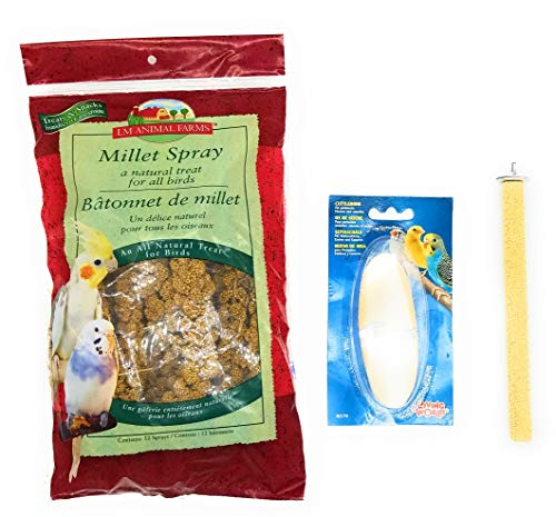 Homebodies Millet Spray, Bird Perch, and Cuttlebone Bundle Including Textured Rough-Surface Bird Perch, Cuttlebone, and Large Bag of Spray Millet for Small and Medium Sized Birds (3 Items)