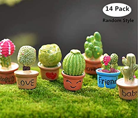 Amazon Com Magnoloran 14 Piece Cactus Flower Pot Plant Fairy