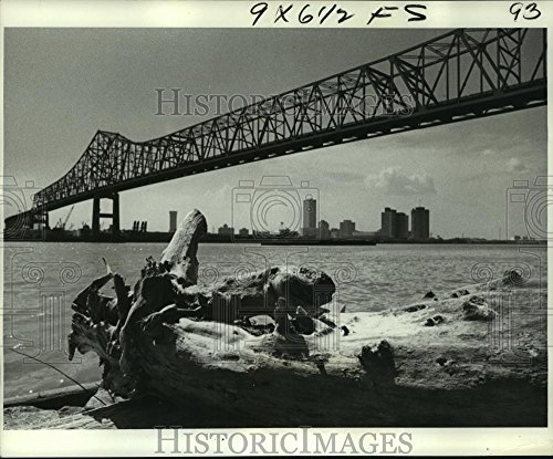 1977 Press Photo Last Spring's Driftwood in Mississippi River from New Orleans - 8.25 x 10 in. - Historic Images