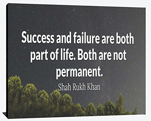 Success and Failure are Part of Life Not Permanent Shah Rukh Khan Success Relentless Fearless Overcome Happiness Joy Prosperity Wood Wall Art Print Photo Image Decor