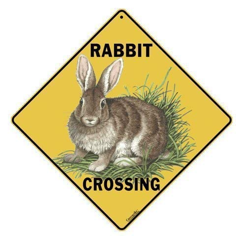 - CROSSWALKS Rabbit Crossing 12