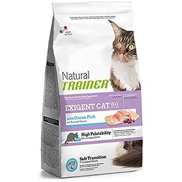 Trainer nf8015699007690 Alimentos para Gatos - 1500 G: Amazon.es: Productos para mascotas