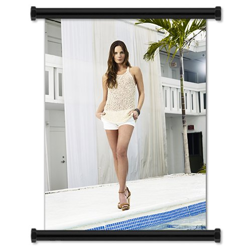 "Burn Notice TV Show Season 3 Fabric Wall Scroll Poster (16"" X 21"") Inches -  ScrollDepot, BurnNoticeS3-12"