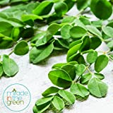 Miracle In the Green ANTI-AGING 100% Moringa Leaf Powder Green Energy Superfood Powder and Facemask