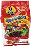 Sun-Maid California Raisins Mini Snacks Bags, 6 oz