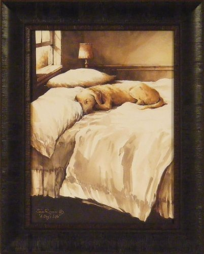 A Dog's Life by John Rossini 17x21 Yellow Lab Labrador Dog Sleeping On Bed Framed Art Print Picture