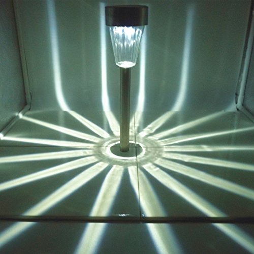 Stainless Steel Path Lights - 3