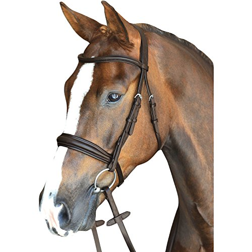Crown Snaffle Bridle (Collegiate Mono Crown Padded Raised Cavesson Snaffle Bridle Horse Brown)