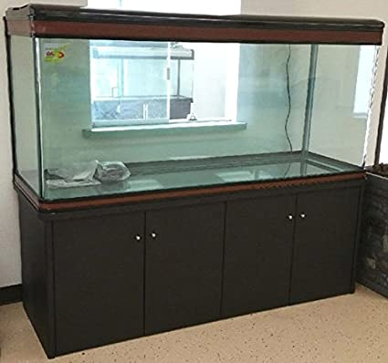 200 Gallon Glass Fish Tank Reef Aquarium, With Filter System, T8 Lighting  System,