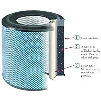 Austin Air Allergy Machine Jr. (HEGA) Replacement Filter w/ Prefilter