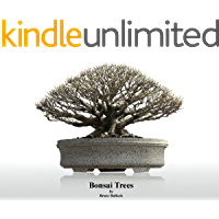 Bonsai Trees (English Edition)