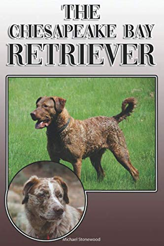 The Chesapeake Bay Retriever: A Complete and Comprehensive Owners Guide to: Buying, Owning, Health, Grooming, Training, Obedience, Understanding and Caring for Your Chesapeake Bay Retriever