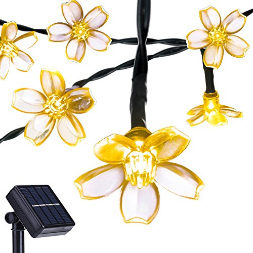 Flower Led Lights String in Florida - 7