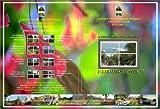 Nature Views Video, Vol. 7 by Mammoth - California, USA, Manuel Antonio - Costa Rica, Slide Rock Canyon - Arizona, USA Alamo