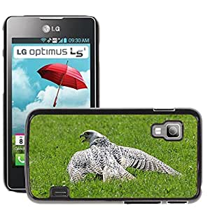 Hot Style Cell Phone PC Hard Case Cover // M00111807 Bird Of Prey Birds Nature Chile Arend // LG Optimus L5 II Dual E455 / E460