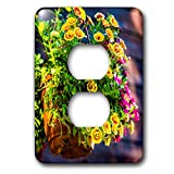 3dRose Alexis Photography - Flowers Petunia - Colorful petunia flower grow in a hanging ceramic pot - Light Switch Covers - 2 plug outlet cover (lsp_287374_6)