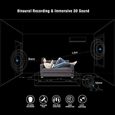 Scenes LIFELIKE VR Recording Earphone, Smart Binaural Recording Headphones, Immersive 3D Sound, Apple iOS ONLY, In-Ear Earbuds, In-Line Remote with Microphone, No Extra App Needed, Black