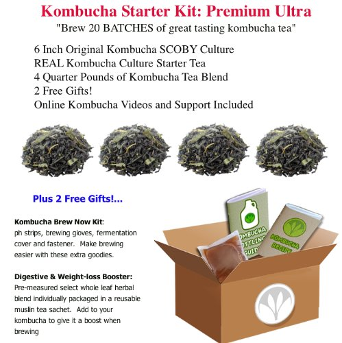 getkombucha, Kombucha Starter KIT, Make Raw Organic Kombucha Tea Starter Kit