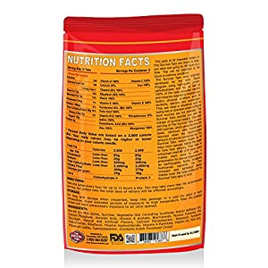 Survival Tabs 2-day 24 tabs Prepper Food Replacement for Nuclear Monitoring Technician Emergency Food Supply Gluten Free and Non-GMO - Butterscotch Flavor