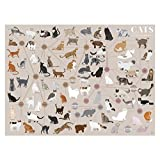 Cats Categorized Print (18 X 24) by Pop Chart Lab
