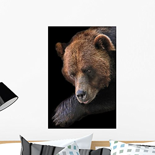 Wallmonkeys A Brown Bear At The Brookfield Zoo Assumes An Interesting Posture Peel And Stick Wall Decals Wm43443  24 In H X 16 In W