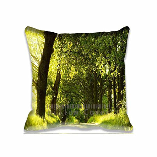 square-throw-pillow-case-cushion-cover-fashion-home-decorative-pillowcase-gift-twin-sides-pillowslip