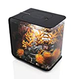 FLOW 15 Aquarium with LED Light - 4 gallon, black