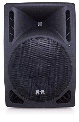 Belva 15-inch DJ Speaker