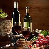 Audapstar Wine Opener, Unique Wine