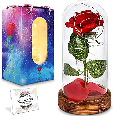 La Bella y la Bestia,la Bella y el Encantador kit de la Bestia Roja,Elegante Cúpula de Cristal con Luces LED de Base de Pino,Día de la Madre,Decoración de Regalo de Para la Boda de día de San Valentín